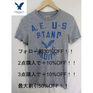 アメリカンイーグル(American Eagle)の匿名即日発送!アメリカンイーグルU.S霜降りTシャツ/S(Tシャツ/カットソー(半袖/袖なし))