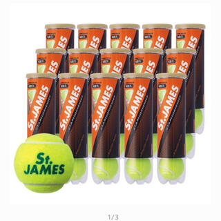 ダンロップ(DUNLOP)の【新品未開封】セントジェームズ 硬式テニスボール 4球×15缶(ボール)