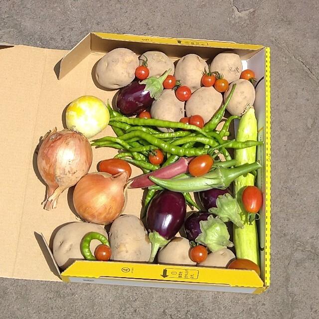 【宅配便コンパクト】お野菜セット 食品/飲料/酒の食品(野菜)の商品写真
