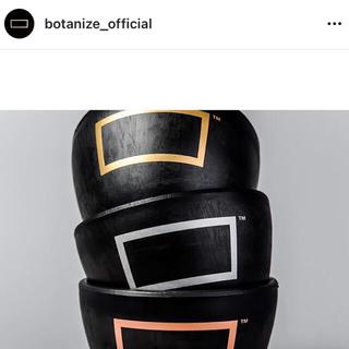 ボタナイズ BOTANIZE プラスチック鉢(プランター)