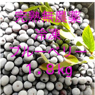 💝全国配送中冷凍ブルーベリー 1.8KG クール冷凍送料込(フルーツ)