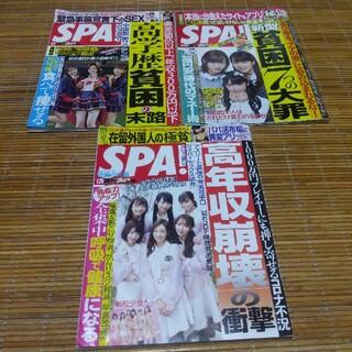 SPA3冊(ニュース/総合)