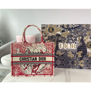 ディオール(Dior)のDIOR BOOK TOTE スモールバッグ(トートバッグ)