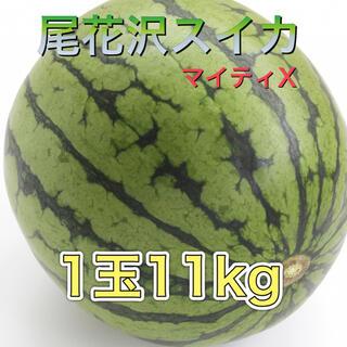 72702 尾花沢スイカ マイティX 1玉11kg 訳あり 西瓜 大玉(フルーツ)