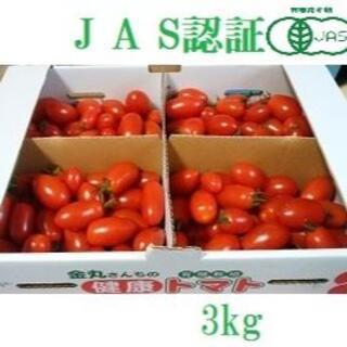 有機JAS認証 北海道産ミニトマト (アイコ) 3kg