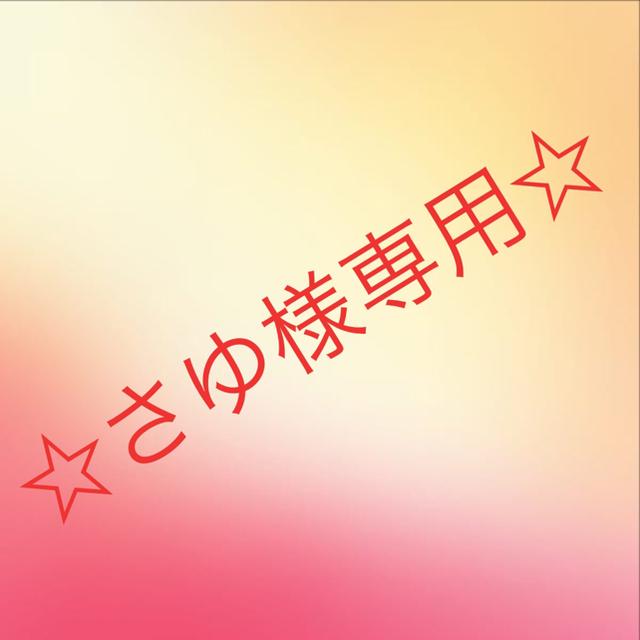 THE NORTH FACE(ザノースフェイス)の☆さゆ様専用☆ メンズのトップス(Tシャツ/カットソー(半袖/袖なし))の商品写真