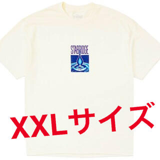 STABRIDGE Hydration S/S Tee (Natural)(Tシャツ/カットソー(半袖/袖なし))
