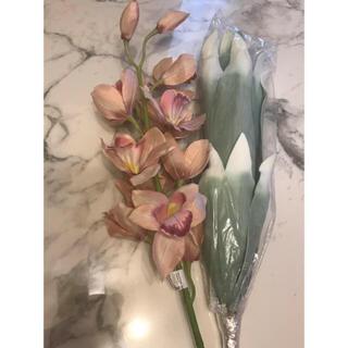 Francfranc -  新品 2️⃣点 フランフラン 造花 シンビジウム ♡ ドラセナ ♡ プランツ