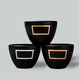 ネイバーフッド(NEIGHBORHOOD)のBOTANIZE Pot Bowl 鉢 ANEAKEN ボタナイズ(プランター)