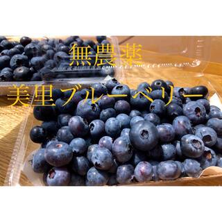 無農薬ブルーベリー1キロ♪(フルーツ)