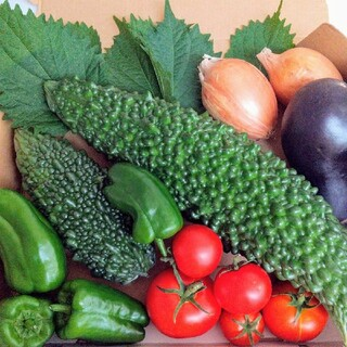 ✨無農薬.無化学肥料.野菜詰め合わせ6種類 ✨