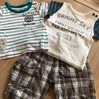 キムラタン(キムラタン)のキムラタン、ビケットTシャツパンツ3枚セット80男の子(Tシャツ)