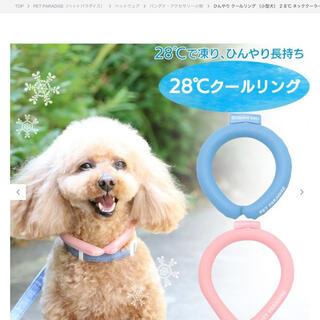 ペットパラダイス28℃クールリング ブルーSSサイズ ¥3,300