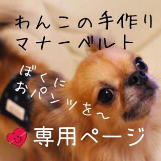 【16時以降→翌日お返事】nico+様専用ページ(犬)