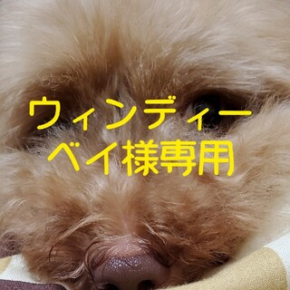 ウィンディーベイ様専用ページ(犬)
