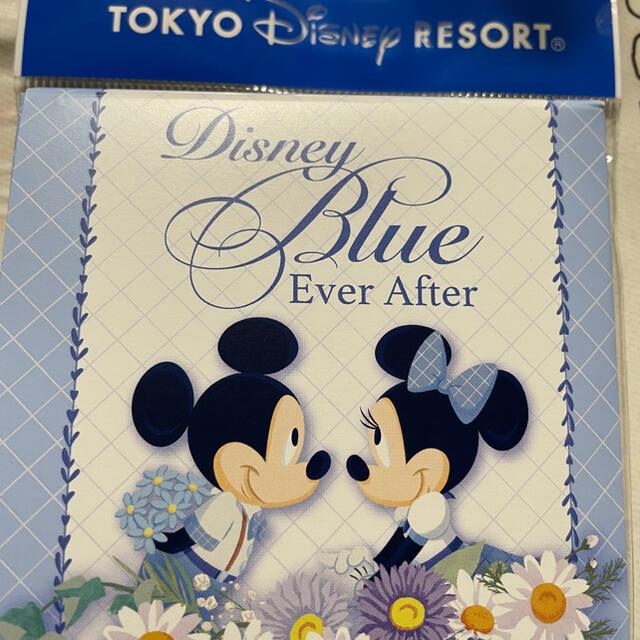 Disney(ディズニー)のブルーエバーアフター チャーム エンタメ/ホビーのおもちゃ/ぬいぐるみ(キャラクターグッズ)の商品写真