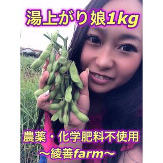 【綾善farm】農薬・化学肥料不使用の枝豆(湯上がり娘)約1kg
