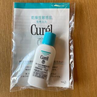 Curel - キュレル ローション 乳液タイプ