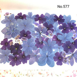 ♡new♡  ♡可愛い押し花セット♡ ♡たくさん入って使いやすい押し花セット♡