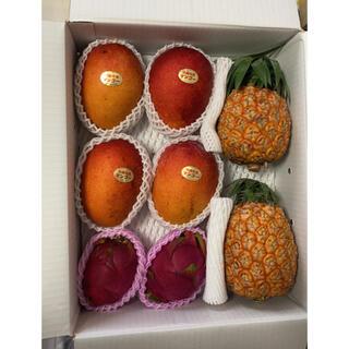 【南国セット】5kg分 マンゴー、パイン、ドラゴンフルーツ(フルーツ)