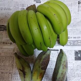 台湾系島バナナに幻のアイスクリームバナナ 自然栽培 農薬不使用 激レア南国果物(フルーツ)