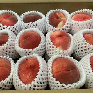 [B品]新潟県産桃 3kg(フルーツ)