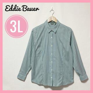 Eddie Bauer - 美品✨エディーバウワー✨シャツ ストライプシャツ 長袖 グリーン 3L