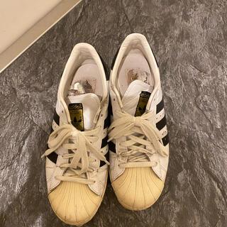 adidas - アディダス スーパースター 80s adidas superstar
