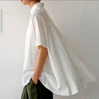 antiqua - コットンドレープシャツ シャツ ユニクロ GU ZARA 好きにお勧め