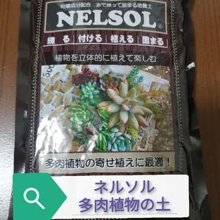 ネルソル多肉植物寄せ植え用の土(その他)