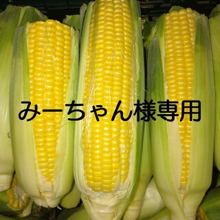 規格外とうもろこし(黄色)45本(野菜)