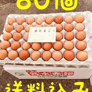 80個 若たまご 卵掛けご飯 生2週間 加熱1ヶ月 北海道*沖縄追加送料