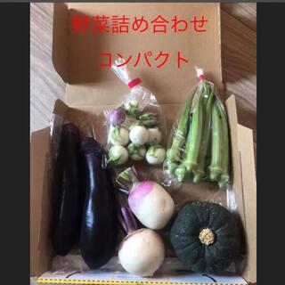 野菜詰め合わせ  コンパクト