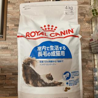 ROYAL CANIN - ロイヤルカナン  インドア  ロングヘアー