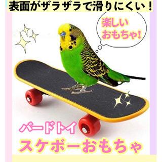 鳥のおもちゃ バードトイ スケボー