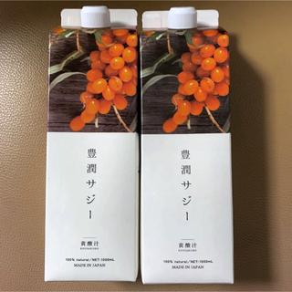 フィネス 豊潤サジー 黄酸汁 1000ml  2本セット
