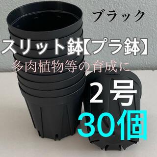 スリット鉢2号 直径6センチ 30個(プランター)