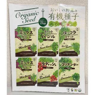 コストコ(コストコ)の6袋 ★ コストコ オーガニックシード おいしい野菜の有機種子(野菜)
