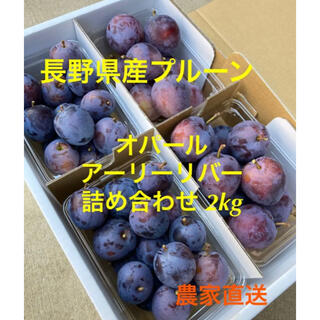 長野県産プルーン オパール アーリーリバー詰め合わせ2kg 農家直送(フルーツ)