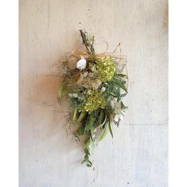 〜アナベルとスモークツリーのグリーンスワッグ〜ドライフラワー ハンドメイドのフラワー/ガーデン(ドライフラワー)の商品写真