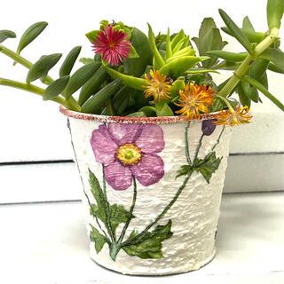 リメイク缶(紫のお花)+多肉植物(プランター)