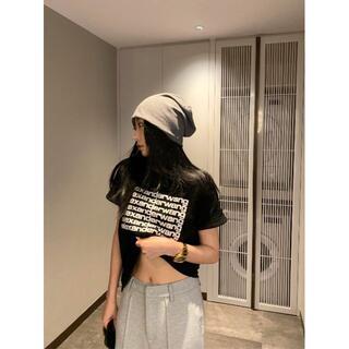 アレキサンダーワン(Alexander Wang)の完売人気【Alexander Wang】半袖のtシャツ(Tシャツ(半袖/袖なし))