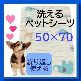 デザインが可愛い☆漏れない、ずれない、エコな洗えるペットシーツ☆50×70cm(犬)