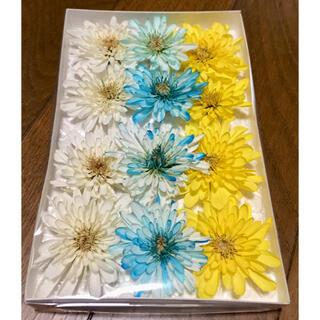 い③  銀の紫陽花が作った可愛い西洋マムのドライフラワーです‼️(ドライフラワー)