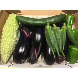 ちょーこ様専用 野菜詰め合わせ コンパクト(野菜)