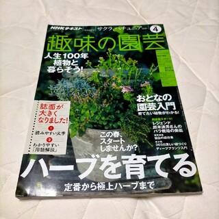 NHK 趣味の園芸 2020年 04月号(専門誌)