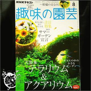 趣味の園芸2021年8月号(専門誌)