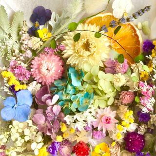 ドライフラワー花材セットNo.221⁑カラフルバラエティー
