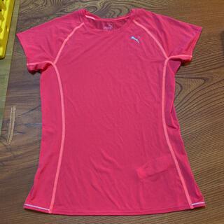 プーマ(PUMA)のプーマ PUMA トレーニングウェア ランニングシャツ Tシャツ(ウェア)