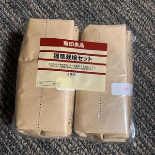 ムジルシリョウヒン(MUJI (無印良品))の無印良品 猫草栽培セット 2セット(猫)